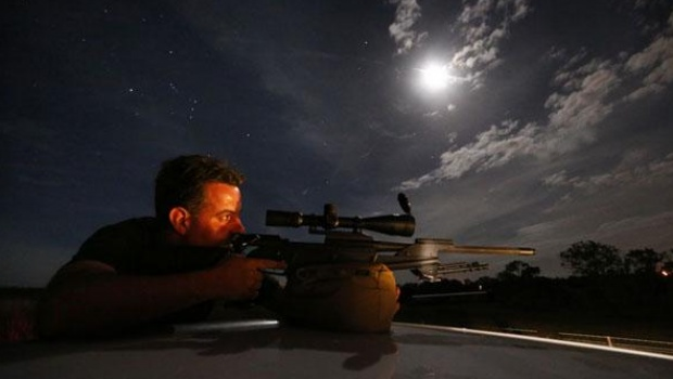 Kangaroo shooter Steven O'Donnell rests his .223 calibre rifle on the roof of his truck as he aims at a group of kangaroos on a property located on the outskirts of Australia's capital city Canberra March 23, 2013. O'Donnell, a professional plumber, shoots kangaroos on local farmer's properties around three times a week as part of the annual cull, running from March until the end of July, which involves the legal shooting and tagging of thousands of eastern grey kangaroos per year in the Australian Capital Territory. Picture taken March 23, 2013. REUTERS/David Gray (AUSTRALIA)