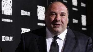 "Cast member James Gandolfini poses at the premiere of ""Zero Dark Thirty""at the Dolby theatre in Hollywood, California December 10, 2012. REUTERS/Mario Anzuoni/Files"