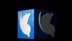 A 3D printed Twitter logo is seen in this illustration picture made in Zenica, Bosnia and Herzegovina, February 3, 2016. REUTERS/Dado Ruvic