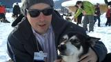 The dogs of Davos - Felix TV