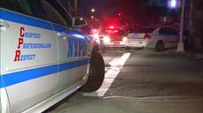 New York City police officer shot and wounded: police