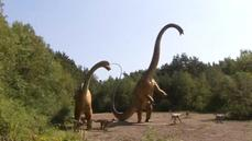 German scientists find rare dinosaur tracks