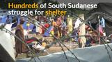 Hundreds of displaced South Sudanese struggle for shelter