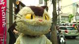 Feline fans gather for Tokyo's cat festival