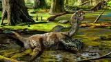 Dynamite blast reveals dinosaur fossil