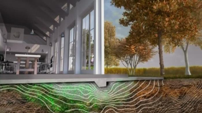Future buildings could grow their own foundations