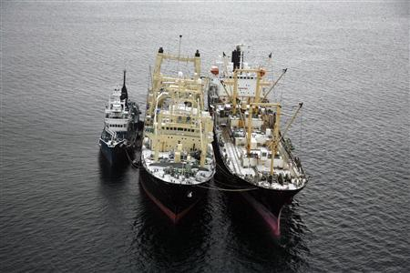 Japanese whaling ship Nisshin Maru (C) is seen tied to the Oriental Bluebird (R) and a whale chase ship (L) in this handout aerial photograph from Greenpeace from the Ross Sea in Antarctica, February 17, 2007. REUTERS/Daniel Beltra/Greenpeace/Handout