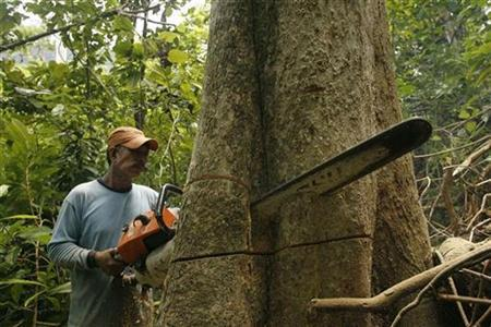 An Indonesian villager cuts timber illegally at a forest in Indonesia's Aceh province April 25, 2007. Indonesia had the fastest pace of deforestation in the world between 2000-2005, with an area of forest equivalent to 300 soccer pitches destroyed every hour, Greenpeace said on Thursday. REUTERS/Tarmizy Harva