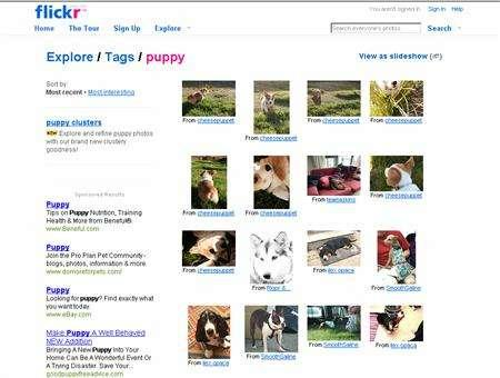 A screengrab of www.flickr.com is seen June 12, 2007. Flickr.com, one of the world's most popular online photo-sharing sites and owned by Yahoo Inc, is likely being blocked by the Chinese government, Yahoo's Hong Kong unit said on Tuesday. REUTERS/ Screengrab/ www.flickr.com