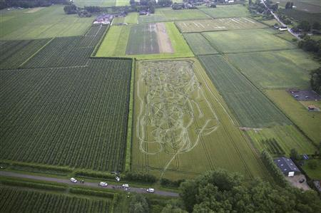 An aerial view of a damaged corn field in Dussen in this June 22, 2007 police handout. A Dutch farmer watched in disbelief as a driver under the influence of cocaine drove a slalom course through his corn field, only to be joined by two police vehicles in hot pursuit, adding to the damage. Police, backed up by a helicopter, eventually managed to corner the 35-year-old driver after he careered into a neighbouring orchard and crashed into a ditch. Picture taken June 22, 2007. REUTERS/Netherlands Police/Handout