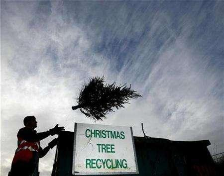 A recycling advisor throws a Christmas tree into a skip at the Lount Recycling and Household Waste Site in Leicestershire, January 5, 2007. A German man threw himself out of a third storey window along with a Christmas tree during a late-night attempt to dispose of his festive decorations. REUTERS/Darren Staples