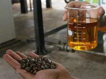 <p>Un operaio mostra un campione di carburante biodiesel ottenuto dai semi di ricino in una fabbrica brasiliana. REUTERS/Jamil Bittar (BRAZIL)</p>