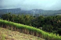 <p>Turbine eoliche all'Isola della Riunione REUTERS/Ed Harris</p>