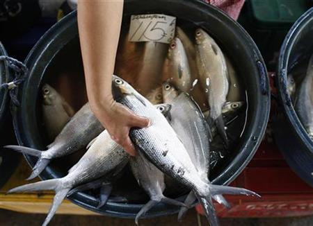 A vendor sorts fish at a fish market located in Paranaque City, metro Manila, September 9, 2008. REUTERS/Darren Whiteside