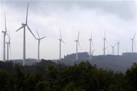 Power-generating windmill turbines form a wind farm on Backbone Mountain near Thomas, West Virginia August 28, 2006. REUTERS/Jonathan Ernst