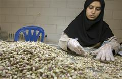 <p>A worker sorts pistachios by hand during a final inspection before packing at a processing factory in Rafsanjan, southeast of Tehran, September 23, 2008. REUTERS/Caren Firouz</p>