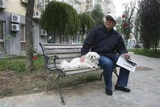 <p>Beijing resident Zhongxin Liu sits with his Pekingese dog Lily on a bench in the garden of his central Beijing apartment compound October 7, 2008. Beijing's Pekingese dogs were the top dogs in the city they are named after for 12 centuries, but have plummeted in popularity over the past decade as exotic new breeds make their way to China. REUTERS/Gil Murdoch</p>