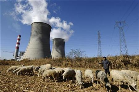 A farmer watches his sheep grazing near a power plant on the outskirts of Changzhi, Shanxi province October 24, 2008. REUTERS/Stringer