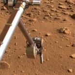 """<p>Imagen de la sonda Phoenix Mars Lander de la NASA tomada el 14 de julio del 2008 This image taken July 14, 2008 en que extiende su brazo robótico para recoger tierra de Marte. Los ingenieros a cargo del cuidado a larga distancia de la misión de la sonda Phoenix enviada a Marte planean apagar sus calentadores uno por uno para que se congele hasta que ya no funcione. La sonda ha estado enviando datos durante cinco meses, mucho más de los tres meses que originalmente debía durar su misión, pero mientras la luz del sol se va volviendo más tenue, comenzará a perder energía. """"Como se esperaba, mientras el hemisferio norte marciano pasa del verano al otoño, la sonda generará menos energía debido a que los días serán más cortos y sus paneles solares recibirán menos horas de luz"""", dijo recientemente la agencia espacial estadounidense en un comunicado. REUTERS/NASA/JPL-Caltech/University of Arizona/Texas A&M University/Handout (UNITED STATES). FOR EDITORIAL USE ONLY. NOT FOR SALE FOR MARKETING OR ADVERTISING CAMPAIGNS.</p>"""