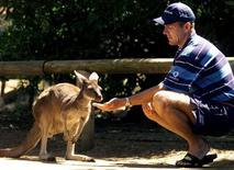 <p>Капитан английской сборной по крикету Алек Стюарт кормит кенгуру в зоопарке города Перта 30 октября 1998 года. Австралийские кенгуру похожи в генетическом плане на человека, а впервые могли появиться в Китае, сообщили во вторник ученые. REUTERS/Ian Waldie</p>