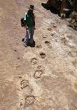 <p>El granjero boliviano Primero Rivera se para junto a unas huellas de dinosaurio en Icla, Bolivia, 16 nov 2008.Rivera se había preguntado por mucho tiempo sobre las marcas en una rocosa colina cerca de su casa.Paleontólogos solucionaron el misterio este mes: se trata de huellas de dinosaurios fosilizadas, las más antiguas en Bolivia. REUTERS/David Mercado (BOLIVIA)</p>