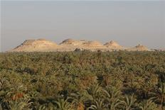 <p>The Siwa Oasis village is seen in a file photo. REUTERS/Nasser Nuri</p>