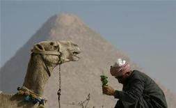 <p>A man feeds his camel as he awaits tourists in front of the Giza pyramids in the outskirts of Cairo, February 8, 2008. REUTERS/Asmaa Waguih</p>