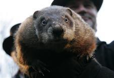 <p>La marmota Punxsutawney Phil realiza su predicción anual del clima en Gobbler's Knob en Punxsutawney, EEUU, 2 feb 2009. La marmota más famosa de Estados Unidos declaró el lunes que el país tendrá aún seis semanas de invierno. REUTERS/Jason Cohn</p>