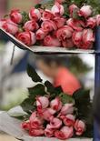 """<p>Foto de archivo de ramos de rosas en Chia, Colombia, 8 feb 2007. """"No hay rosa sin espinas"""". El proverbio cae como anillo al dedo para floricultores de Colombia, que esperan que los consumidores pongan el sentimiento por encima de la razón, en medio de la recesión económica de su principal comprador, Estados Unidos. Y es que pareciera no haber felicidad completa para las 200.000 personas que dependen de la floricultura en el país andino, el segundo mayor exportador mundial de flores del mundo después de Holanda. REUTERS/Jose Miguel Gomez</p>"""