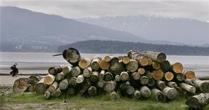 <p>A pile of cut logs sit on Spanish Banks in Vancouver, British Columbia April 26, 2006. REUTERS/Andy Clark</p>