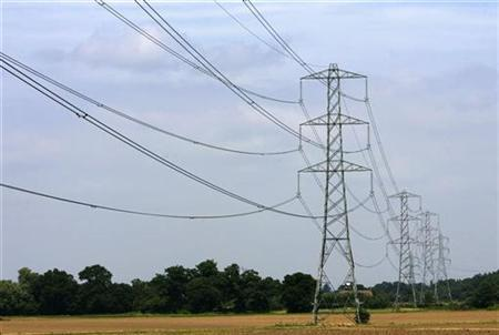 Electricity pylons are pictured near Cobham in Surrey, July 25, 2008. REUTERS/Luke MacGregor