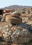 <p>Сирийский рабочий показывает израильскую мину, обнаруженную на Голанских высотах 18 ноября 2007 года. Израильский любитель пеших прогулок совершил роковую ошибку, когда проложил очередной маршрут через минное поле. REUTERS/Khaled Al Hariri</p>