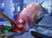 <p>Un pesce robot . Si precisa che la foto ha solo scopo illustrativo della notizia. REUTERS</p>