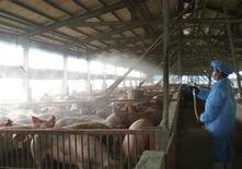 <p>Trabajadores rocían desinfectante sobre cerdos como una medida de precaución en una granja en Taiwán, 27 abr 2009. La Organización Mundial de la Salud (OMS) elevó a fase 4 desde fase 3 su nivel de alerta por la epidemia de gripe porcina que azota a México y que ya ha matado a casi 150 personas en ese país. REUTERS/Cortesía Centro de Control de Enfermedades en Animales del Condado de Chunghua</p>