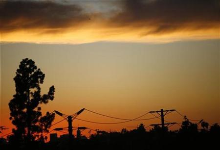 A tree and power lines are silhouetted as the sun sets in Los Angeles on January 19, 2009. REUTERS/Mario Anzuoni