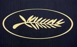 <p>A Palme d'Or symbol is seen on the eve of the opening of the 61st Cannes Film Festival May 13, 2008. REUTERS/Vincent Kessler</p>