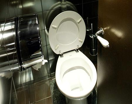A toilet is seen in this undated file photo. REUTERS/Xavier Lhospice
