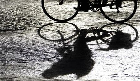 A man casts a shadow as he rides his bicycle in Berlin January 14, 2008. REUTERS/Johannes Eisele