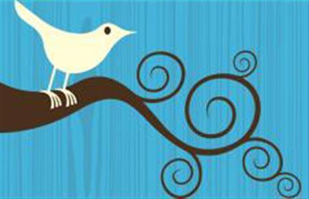 A Twitter bird in an undated image. REUTERS/Twitter.com