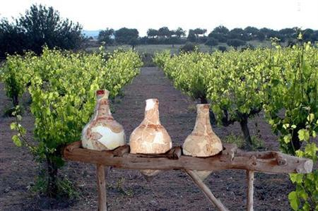 This undated handout photo shows wine jugs on display in a vineyard in Erimi, Cyprus. REUTERS/Ho New