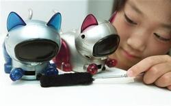 <p>Foto de archivo de unos gatos robot Robopal Jaretto en una muestra en Osaka, Japón, 11 ago 2000. Gatos simulados y otras compañías artificiales fabricadas por el hombre podrían acompañar a los ancianos británicos en un plazo de tres años si se convence a la sociedad de empezar a convivir con robots. REUTERS/Eriko Sugita</p>