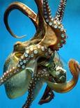 <p>Осьминог Фрида в Мюнхенском зоопарке 14 марта 2003 года. Если вы привыкли, что осьминог на тарелке не двигается и вообще мертв, то в Южной Корее вам подадут живого и резвого спрута. REUTERS/STRINGER</p>