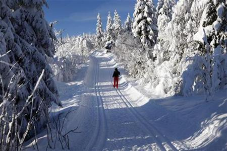 A lone skier makes her way through the snow on the outskirts of Oslo February 9, 2009. REUTERS/Lise Aaserud / SCANPIX