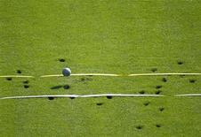<p>Ядро на газоне Олимпийского стадиона в Берлине 15 августа 2009 года. Столетняя спортсменка побила мировой рекорд в толкании ядра в ходе Всемирных игр мастеров в Сиднее. REUTERS/Max Rossi</p>