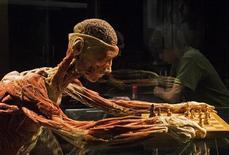 """<p>Un visitante lee acerca de """"The Chess Player"""", parte de la exhibición """"The Cycle of Life"""", en el Centro de Ciencia de Singapur, 28 oct 2009. Una controvertida exhibición que retrata a la vida desde la concepción hasta la vejez usando cadáveres llegó esta semana a Singapur, pero sin la muestra de cuerpos copulando que provocó protestas en Alemania. La exposición """"The Cycle of Life"""" de Body Worlds es una de sus numerosas exhibiciones en todo el mundo con cadáveres despojados de piel, revelando músculos y órganos en posiciones reales, pero a menudo también teatrales. REUTERS/Edgar Su</p>"""