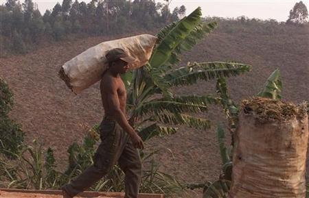 A charcoal dealer transports some of his charcoal to a roadside sale thirty kilometres outside Antananarivo December 15, 2001 as a cleared forest is seen behing him. REUTERS/George Mulala