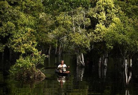 A fisherman rows his boat on a peatland river in the Kerumutan protected forest near Teluk Meranti village in Pelalawan, Indonesia's Riau province, November 11, 2009. REUTERS/Beawiharta