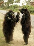 <p>Imagen de archivo en que dos osos perezosos bailan en una calle cerca de Agra, en India, 15 sep 2004. El oso Raju nunca más volverá a fumar cigarrillos ni bailar sobre sus piernas traseras bajo el sol gracias a un proyecto multinacional para salvar a la especie en extinción y para terminar con una antigua y cruel tradición en India. Raju es el último oso perezoso en peligro de extinción que tuvo que trabajar para sobrevivir y ahora camina libremente en el santuario de osos Bannerghatta en las afueras de la sureña ciudad de Bangalore. REUTERS/Kamal Kishore/Archivo</p>
