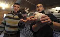 <p>Ivan and Saimir (R) show the quails they breed in the maximum security jail at Opera near Milan December 30, 2009. REUTERS/Paolo Bona</p>
