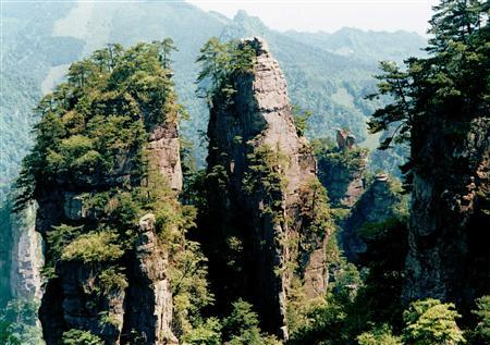 A view of Zhangjiajie National Forest Park in China's southern Hunan province May 10, 2004. REUTERS/China Daily